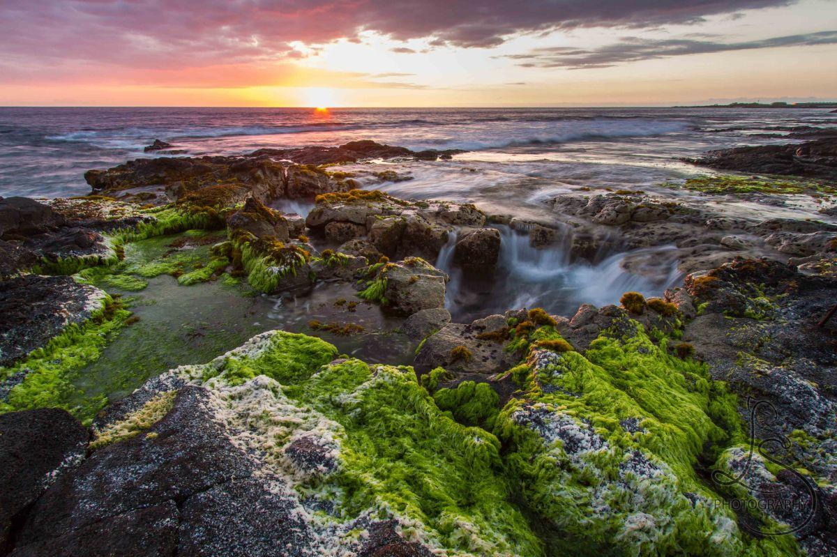 Hawaii: Pukas