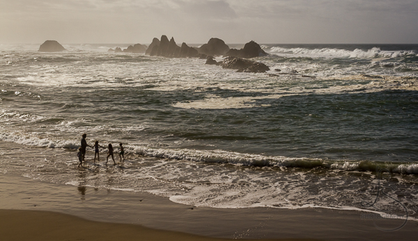 Beach near Newport Oregon