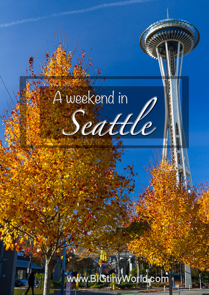 A Weekend in Seattle | BIGtinyWorld Travel | From views to kitties, a Japanese garden to delectable food - we had a blast over this weekend in Seattle! | #pacificnorthwest #travel #travelcouple #seattle #pnw #travelblog