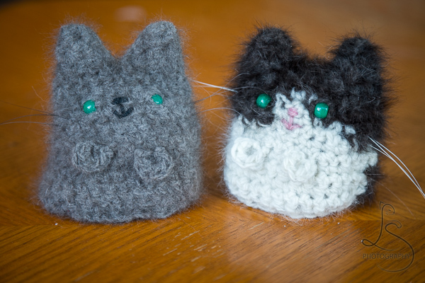 kitties-3