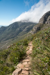 table-mountain-13