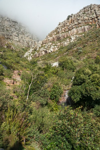 table-mountain-8
