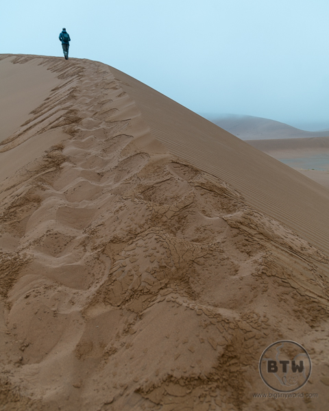 Big Daddy Dune in the Fog