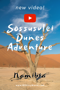 Namib Desert Sossusvlei Adventure (Video) | BIG tiny World Travel | The desert sand dunes in Namibia are the highest in the world. Climbing them was easy and exhilarating. Our latest video is out and has a surprising ending. Don't miss it!| #travel #sanddunes #Sossusvlei #Namib #Deadvlei #shadeadventures