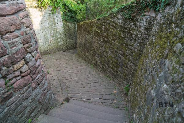 Philosophers Walk in Heidelberg