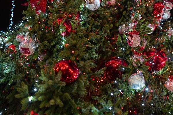 Close up of Rijeka Christmas Tree in Center Square