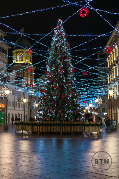 Christmas tree in Rijeka   BIG tiny World Travel
