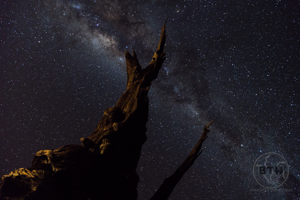 Milky Way over the Namib Desert   BIG tiny World Travel