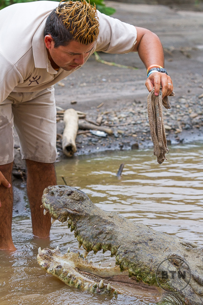 Our crazy tour guide playing with a crocodile