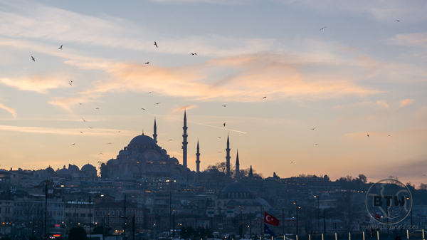 A mosque in Istanbul at sunset, surrounded by seagulls